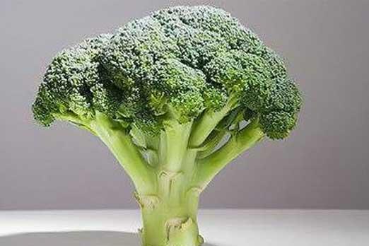 www.alsumaria.tv/ExtImages/635949316641056765-broccoli
